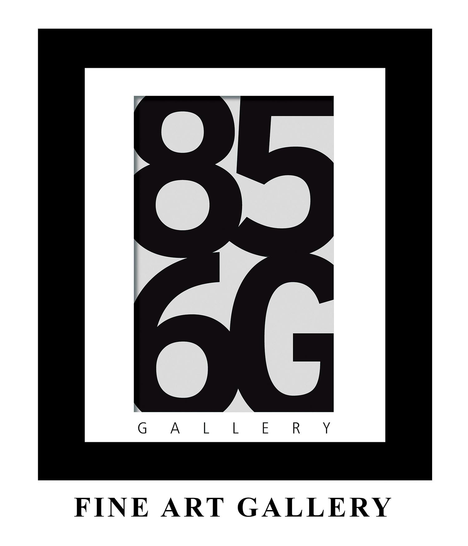 856g (Gallery)