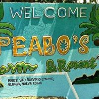 Peabo's farm and resort