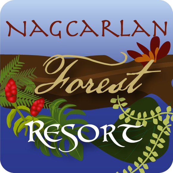 Nagcarlan Forest Resort