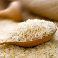 RICE BUSINESS FOR WHOLESALERS AND RETAILERS