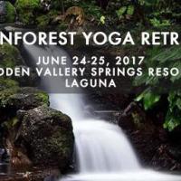 Rainforest Yoga Retreat