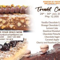 Intensive Travel Cakes