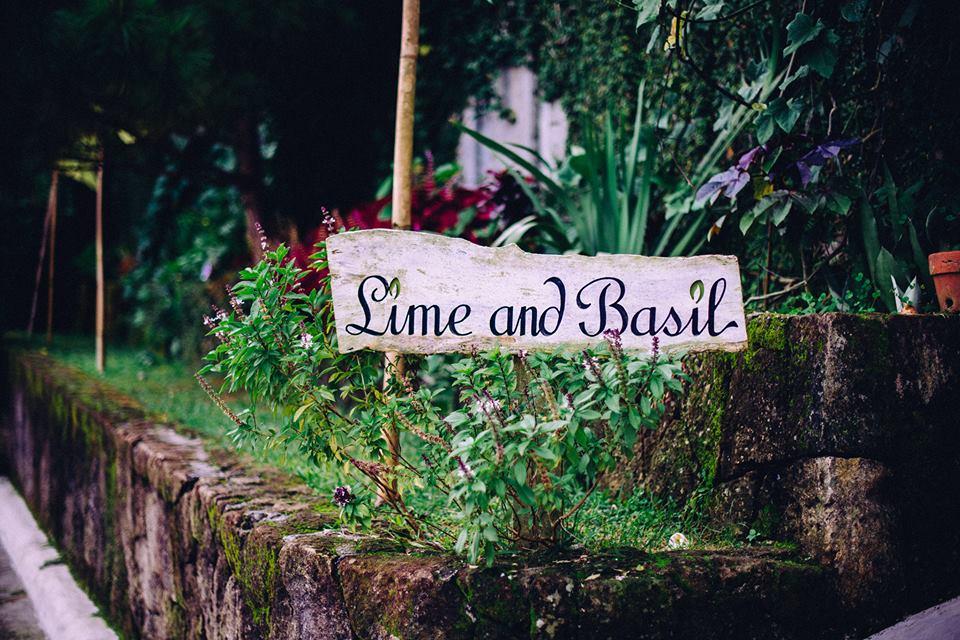 LIME AND BASIL THAI RESTAURANT