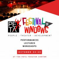 The PETA Festival Of Windows: A Celebration Of People's Theater For Development