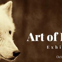 WWF Art of Kindness Exhibit