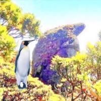 MT.SICAPOO TRAVERSE (chasing penguin)