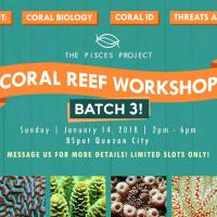 Coral Reef Workshop