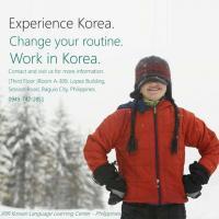 Afternoon Korean Language Training