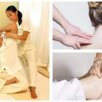 Acupressure, Shiatsu and Body Manipulation Therapy Massage Seminar Set II