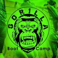 Gorilla Boot Camp - Obstacle Course Challenge