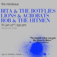 POP ROCK FRIDAY WITH BOTFLIES, LIONS, AND HITMEN  AT THE MINOKAUA