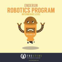 Enderun Intermediate Robotics Program