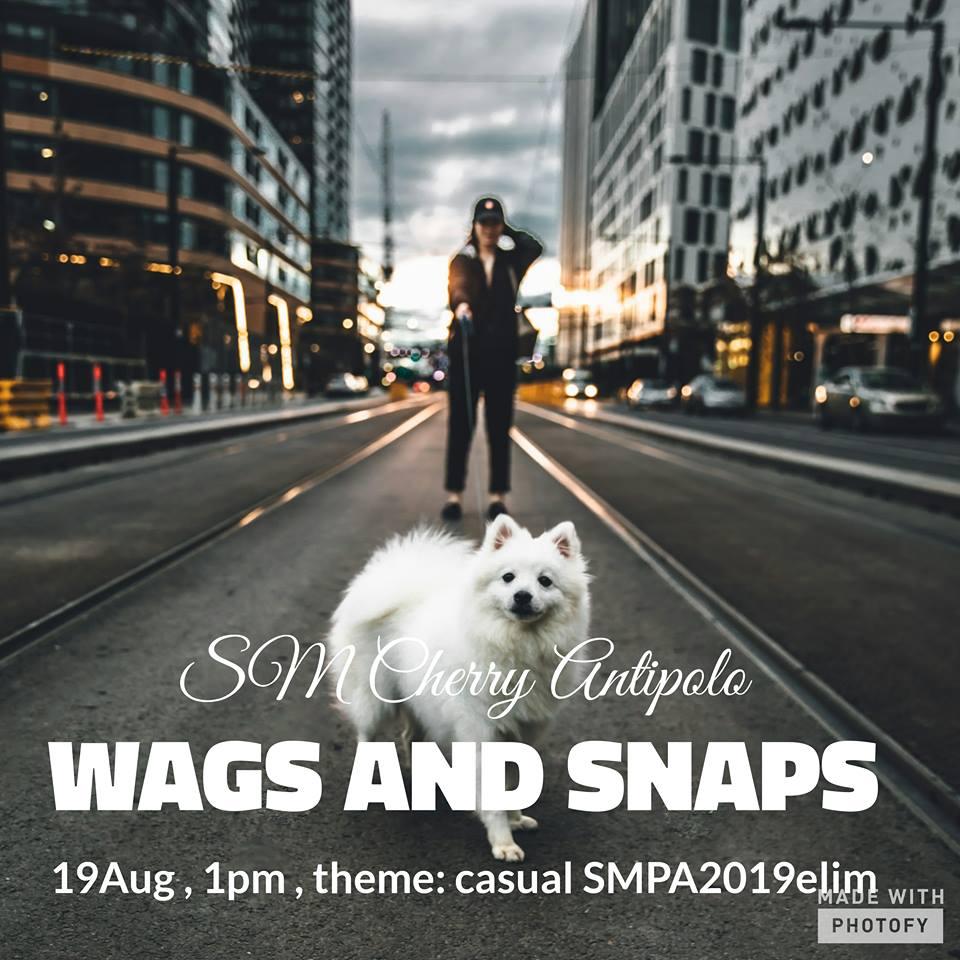 Wags and Snaps SM Pet Ambassador 2019 Elimination Leg