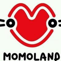 MOMOLAND 2ND VISIT!