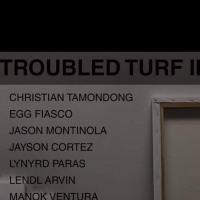 TROUBLED TURF II