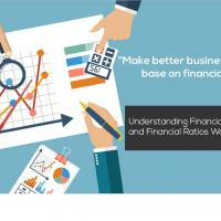 UNDERSTANDING FINANCIAL STATEMENTS AND FINANCIAL RATIOS WORKSHOP