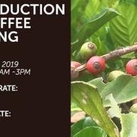 INTRODUCTION TO COFFEE FARMING