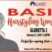 Basic Hairstyling Workshop