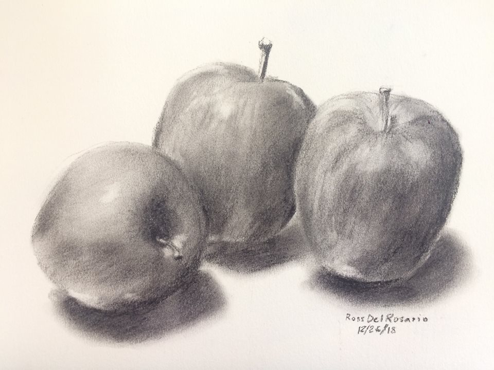 CHARCOAL STILL LIFE DRAWING WORKSHOP - What's Happening