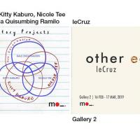 INVESTIGATORY PROJECTS | OTHER ECHOES