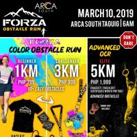 FORZA OBSTACLE RUN 2019