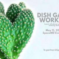 DISH GARDEN WORKSHOP