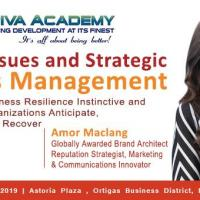 RISK, ISSUES AND STRATEGIC CRISIS MANAGEMENT