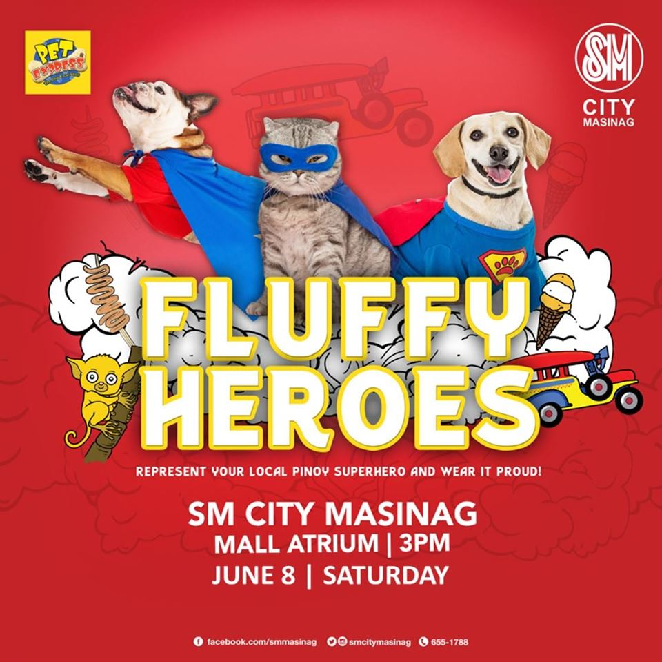 Paws at Play Y2 - Fluffy Heroes!