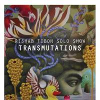 TRANSMUTATIONS