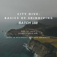 City Dive Batch 188