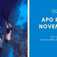 Seazoned Apo Reef Nov
