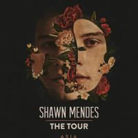 SHAWN MENDES LIVE IN MANILA 2019