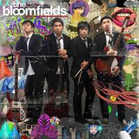 BLOOMFIELDS AT HISTORIA BOUTIQUE BAR AND RESTAURANT