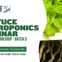 Lettuce Hydroponics Business workshop