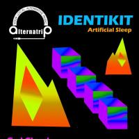 ALTERNATRIP PRESENTS: IDENTIKIT | ARTIFICIAL SLEEP AT CATCH272