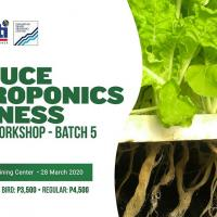 Workshop: Lettuce Hydroponics Business