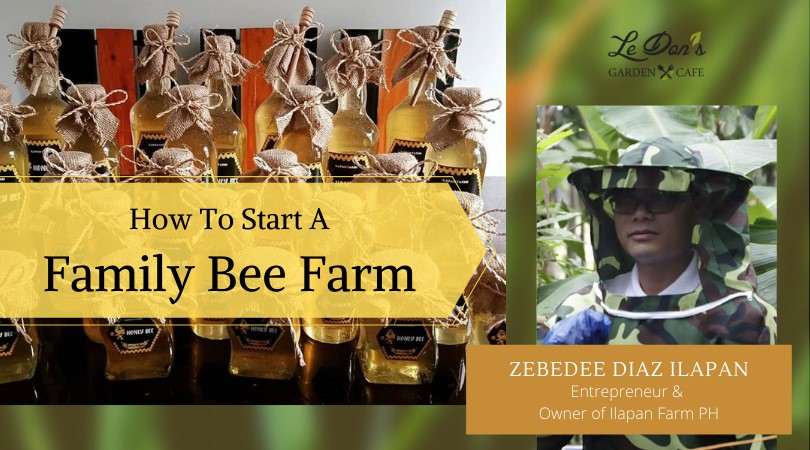 How to Start A Family Bee Farm