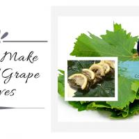 Free Online Food Demo: How to Make Stuffed Grape Leaves