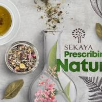 SEKAYA banks on science to optimize the earth's natural ingredients