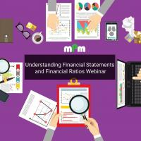 Understanding Financial Statements and Financial Ratios