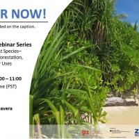 Mangroves 101 Webinar Series | Episode 6: Beach Forest Species - Coastal Protection, Reforestation, Landscaping and Other Uses