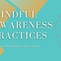 Mindful Awareness Practices