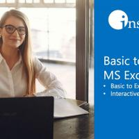 Virtual Class Basic to Advanced MS Excel Training