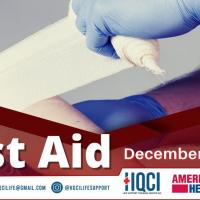 Basic First Aid Online Course