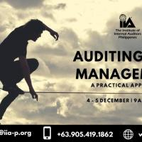 Auditing Risk Management: A Practical Approach