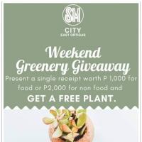 Weekend Greenery Giveaway