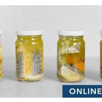 Gourmet Bottled Fish Online Class