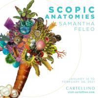 Scopic Anatomies