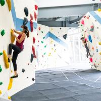 The Bouldering Hive is Back!